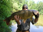 this carp weighed in at 32 pounds 18 inch girth ,38inches long.caught in grand island ny