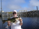 I caught this Kissimmee River Hawg 12/17/2008 on a Rapala Jointed Shad Rap...Shad color fishing with my longtime friend Bill Steele from Hixson Tennessee. This largemouth weighed 10lbs 8ozs on a certified Boga grips. She was released to fight another day..!!!