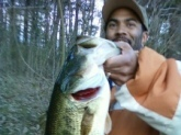 7 pound largemouth bass caught in southern ohio