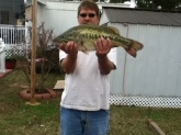 8pound 3 ounce largemouth bass caught on a zoom white trick worm in a pond in alabama