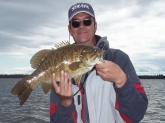 Smallmouth Bass 211/2