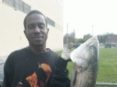 Caught in chester Pa. down by ppl  park in delware river 38 and half inches. caught with blood worms. sat april 14 2012.