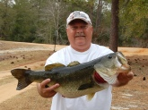 This 11 pound, 2 ounce bass was caught in North West Florida on March 9, 2009. Since this was my second 11 pounder caught, I released the fish after taking the pictures.
