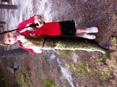 Logan's 1st pickerel...big as him! Caught in Medford New Jersey