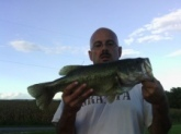 22 in bass caught on Tequila Sunrise plastic worm at local pond