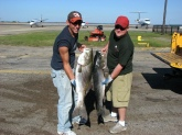 My 27lb striper (left) and my buddies 20lb (right) striper both caught on live eels, nine foot pen rod, with daiwa spinning reel 15lb braided like with a 50 lb mono leader.