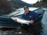 Wild 18 lb female steelhead caught in the Eel river (in Calif) at hte end of Jan.