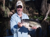 Caught this 9 pound Large Mouth Bass in Lake Griffith 65` water temp on a green frog top water bait.  Used a skip action.