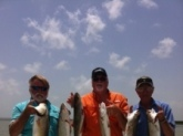 A very nice mix of trout and redfish caught near Rockport Tx. Redfish was 28