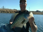 Personal best crappie 3.53lbs.  Caught in Iowa.
