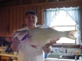 This Hybrid Striped Bass weighed 19lbs7ozs. It was caught at Barren River Lake in Allen and Barren Counties in South Central Kentucky. The monster fish was caught on a Diamond Shad Spoon. It was caught in 2005 and is still the current standing Lake record.