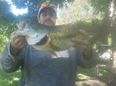 Caught at Springbrook lake estates- 7.8 lb Jackson,TN