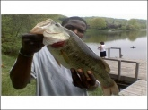 Lake Lingoanre in New market Maryland it was six pounds and i used a blue gill to catch him when was beside the bank