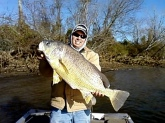 this is a 24 lb drum caught in late october fishing with 4lb test line with 1/16 oz crappie jig on a steep ledge in the mouth of the river.  the crappie were stacked in there as well.  I was fishing with my dad.