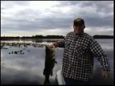 Large mouth bass. Caught and released in Feb. 2008 on Lake Hernando in Hernando, FL.  14lbs. 12oz.