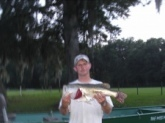 13 pounder 27.5 inces long  cought in land o lakes fl on bills boo yaa dancin buzz bait,