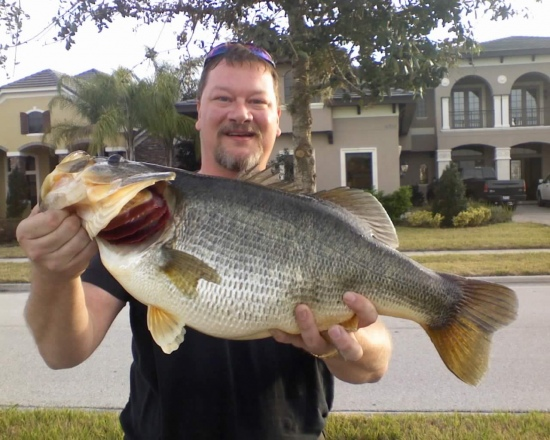 Caught this 13 pounder in Winter Garden Florida in a private pond on February 6, 2010. Using a Booyah dancin buzz that I saw Bill Dance use a few years ago.
