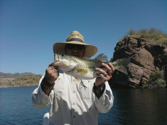4 pound Large Mouth out of Castle Creek at Lake Pleasant Arizona.