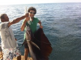 Acapulco, Mexico January 2010, about 10 miles offshore, trolling using