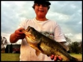 I got this trophy bass on a green dinger finger wacky wormed in the lily pads on November 10th around four oclock. What a fight!
