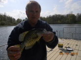 fishing a 8 acre lake in oakland county using tube baits. 14 and 16