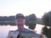 8-6-2014  A good 6lb plus Rage Tail Toad fish. caught her just a dark 2 feet from the shore line. Thought I was snagged. Wow   Columbus NJ   Fran    good fishing  ps  my BIGGEST Bass ever here in NJ
