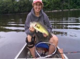 16.5 inch largemouth 2.42lbs caught on the Oxbow in Easthampton Massachusetts.