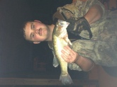 Smallmouth bass caught out of williamstown lake ky