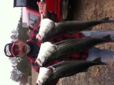 My husband Perry Barnhouse caught these on Lake Lanier in Georgia December 22 2014,  3 striped bass