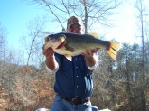 Caught by David Brown at Nickajack Lake in Jasper, TN in January, 2009.  This bass weighed 7 lbs 11 ounces and was caught using a Crankbait.