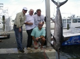 287lb swordfish caught off North Palm Beach, Fla.  Too bad we didn't make it back to the scales on time to win the tournament!