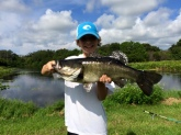 Joseph hauled in this 7lb Largemouth Bass from a small lake in Sarasota, Florida.  Joseph is an avid fisherman and loves to spend his time out of school on the lake or in the gulf hauling in (and releasing) monsters like this!