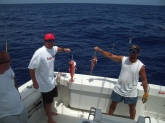 Queen snapper caught deep dropping in 1200 ft in the Bahamas.