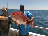 The fish was caught in Panama Florida on April 3, 2016