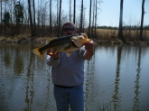 Bill ,i caught this 7.5 lb large mouth in my private pond in Amelia Va March 22 2009 it,s my largest so far