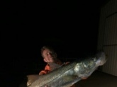 41 inch snook giant girth appx 30 pounds