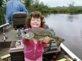 dani reeves 3,year old, caught this 3lb bass this past may in 3 to 4 foot of water while fishing with her papaw.