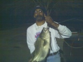 Stripper, caught in High Falls, GA, weigh 10 lbs. 3 oz.