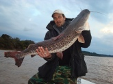 this is the bigest fish of the fresh water in the Uruguay river...It is a surubi of 16 Kg..(35 lb..)
