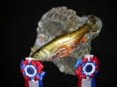 A winning woodcarving from the 2009 World Fish Carving Championships.