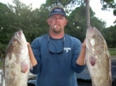 60 miles offshore from Tampa. Back to back 15lb groupers. Only a fraction of the days catch.